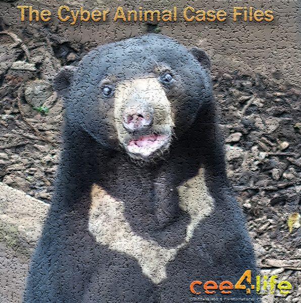Cyber Animal3