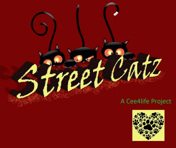 Street Catz 8