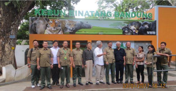 Team in Bandung